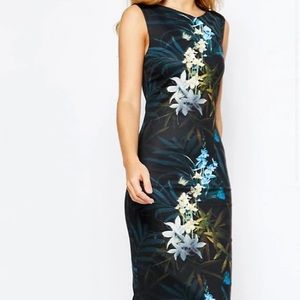 NWT Ted baker twilight floral fitted dress size 0